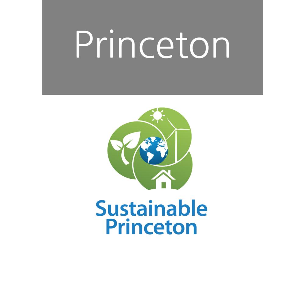 Princeton+(3).png