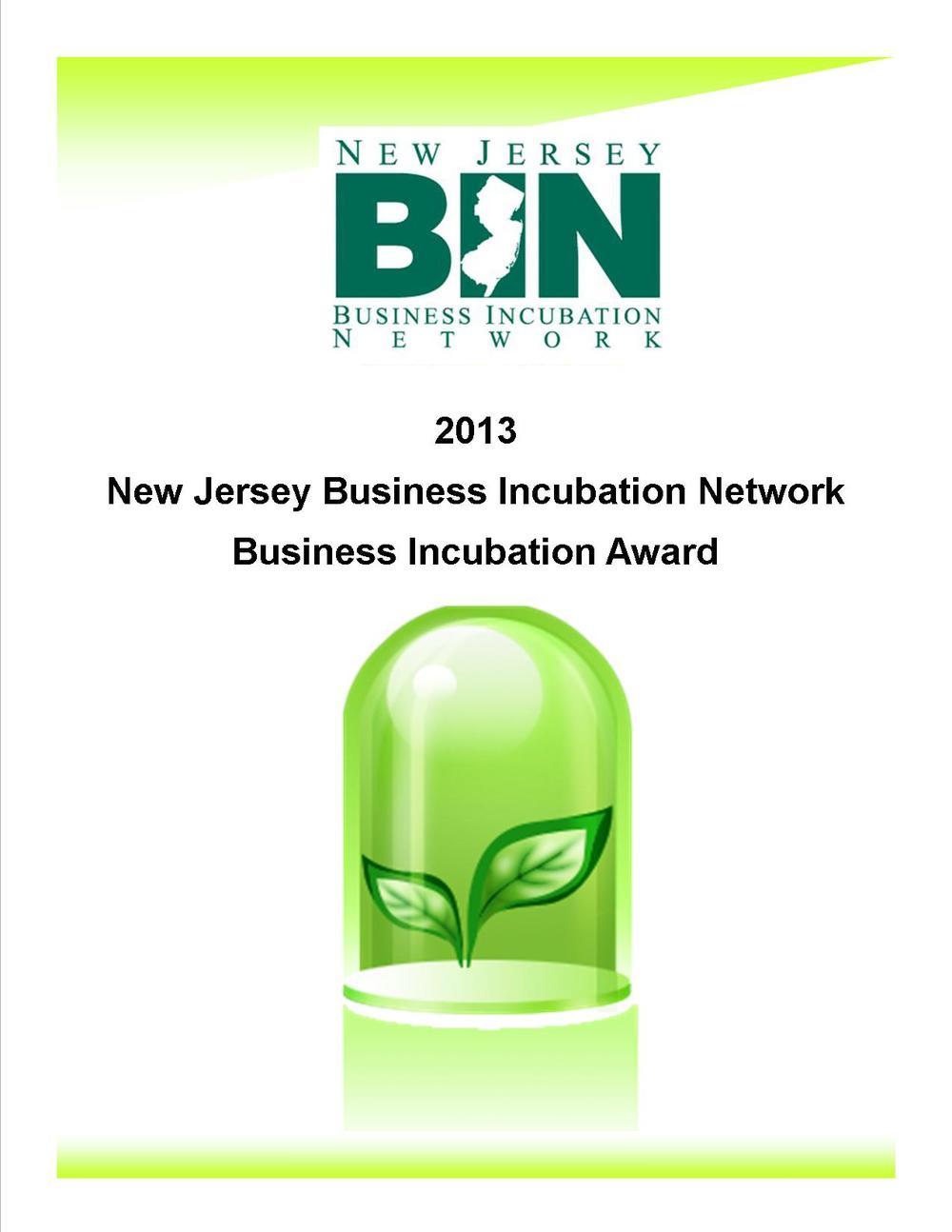 03.14.13 NJBIN Awards Logo.jpg