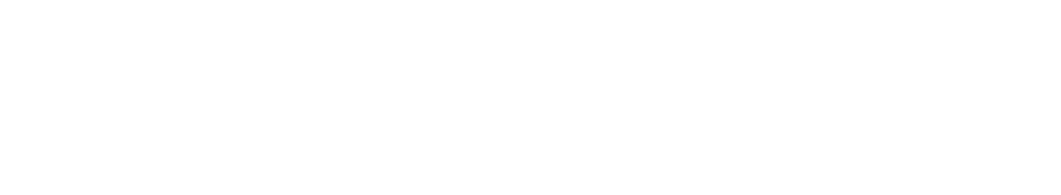 Prime Essential Safety Systems