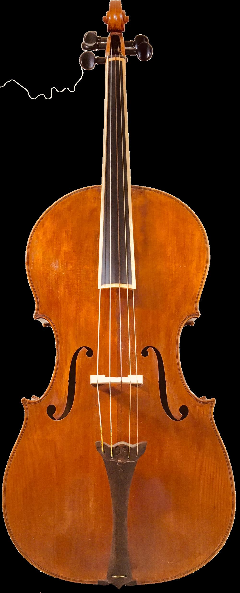 5-String-cello-piccolo-chelo-Detmar-Leertouwer-Tanja-Brandon-.png