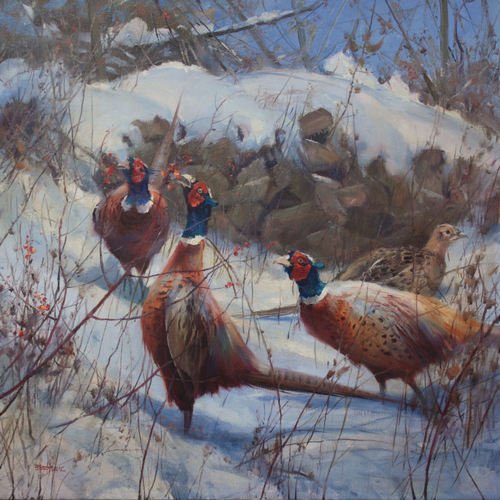 "Winter Foraging, Ringneck Pheasants 26"" x 26"" oil  Troika Gallery"