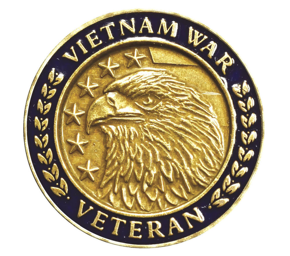 Vietnam War pin-2.jpg