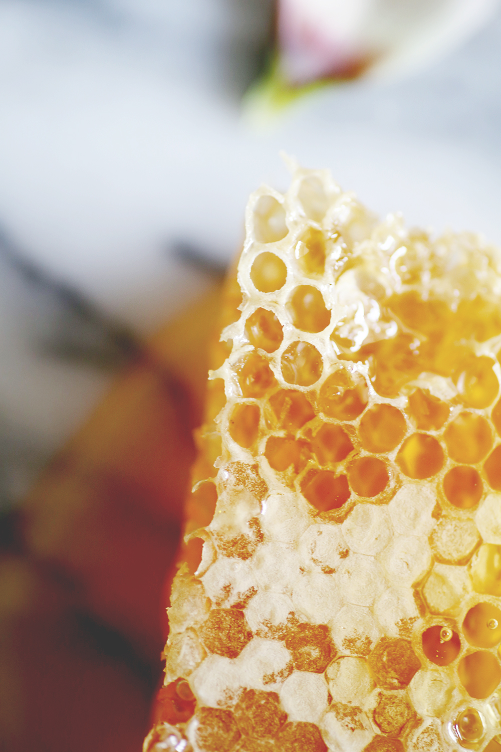 Why Use Honey on Your Face