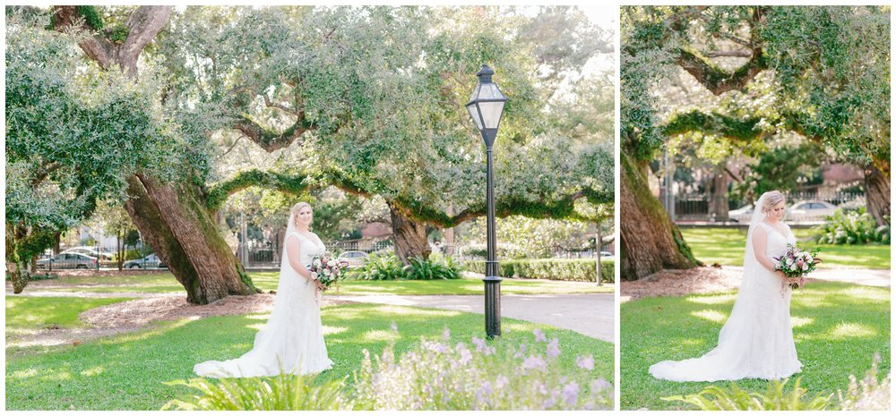 bride on the lawn with the oldest cypress tree in charleston at ashley hall.