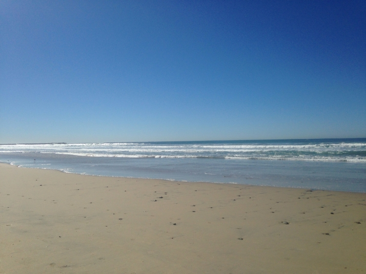 San Diego beach in February. What a treat!