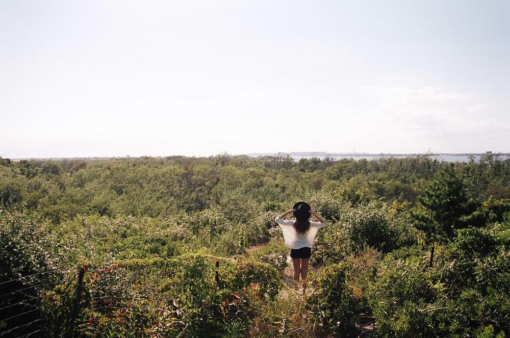 beachfilm8.jpg