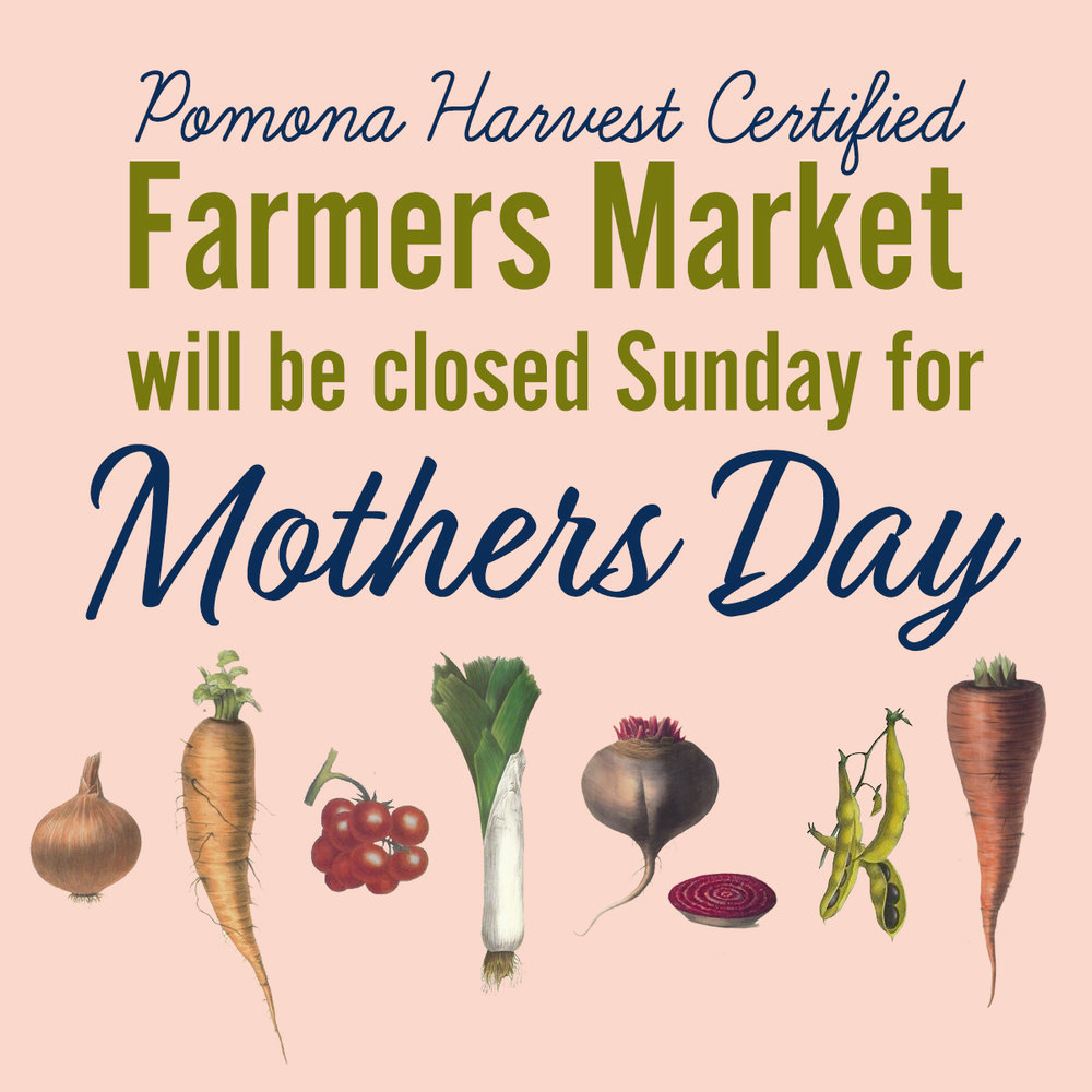 Closed this Sunday   - The Downtown Pomona farmers market will be closed Sunday for Mothers Day. Hope to see you the following Sunday May 20. Have a wonderful Sunday and Happy Mothers Day to all you Moms out there.