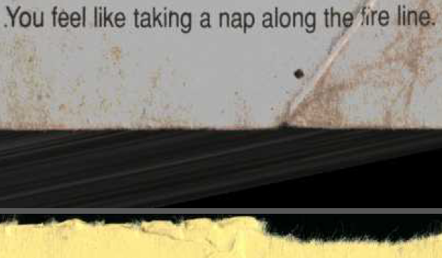 17 YOU FEEL LIKE TAKING A NAP ALONG THE FIRE LINE.PNG