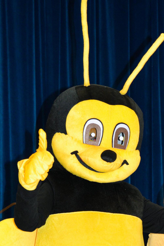 Hillside Bee-4.jpg & 2016-2017 GRANT Hillside Bee Mascot u2014 AFEE - Allendale Foundation ...