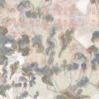 webLONG_clemente_sol_square-180x254.jpg