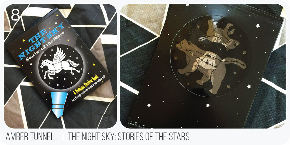 Speaking of bedtime, how cool is this book? You can project constellations on the wall or ceiling and teach the kiddos all about the universe. It is part of a series of books like this with different subjects but definitely a super fun, interactive book for the kids at night.