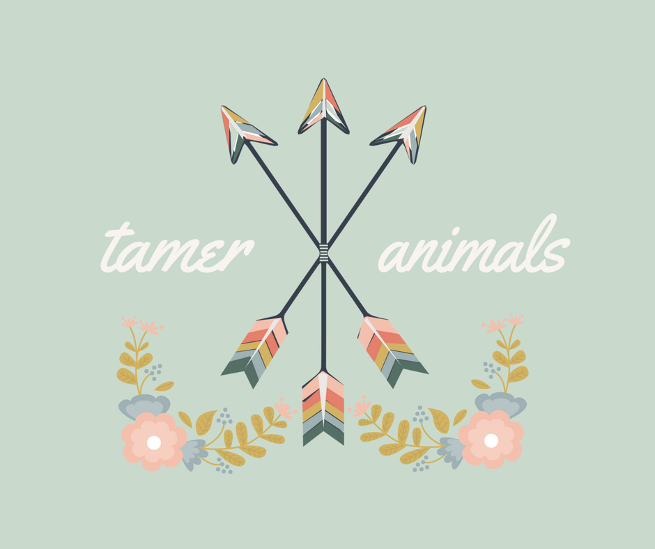 ⌘ tamer animals ⌘