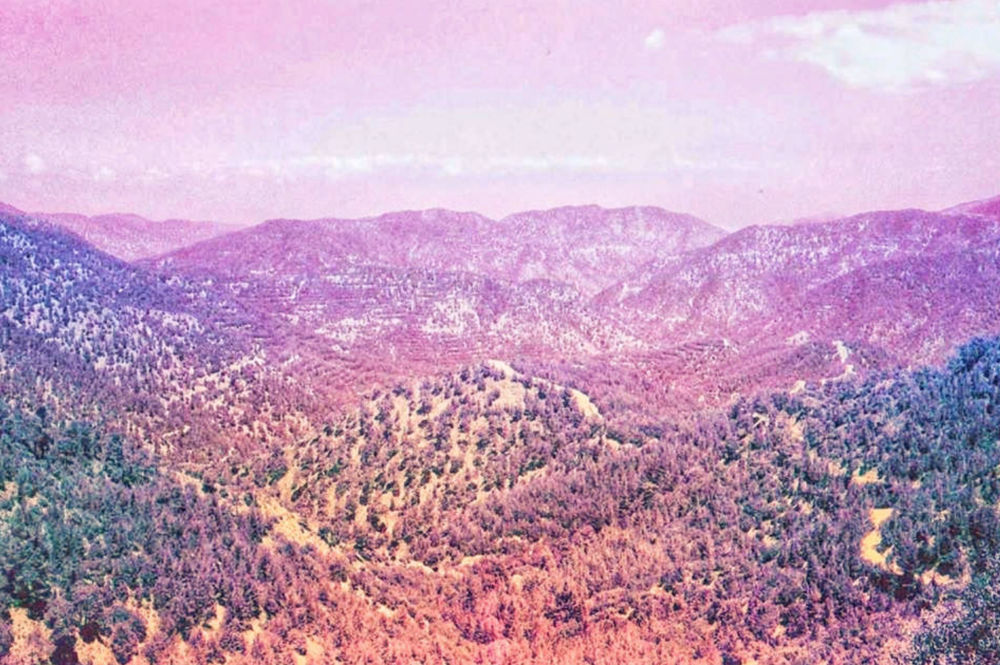 """Troodos Mountains""  Kathryn Young"