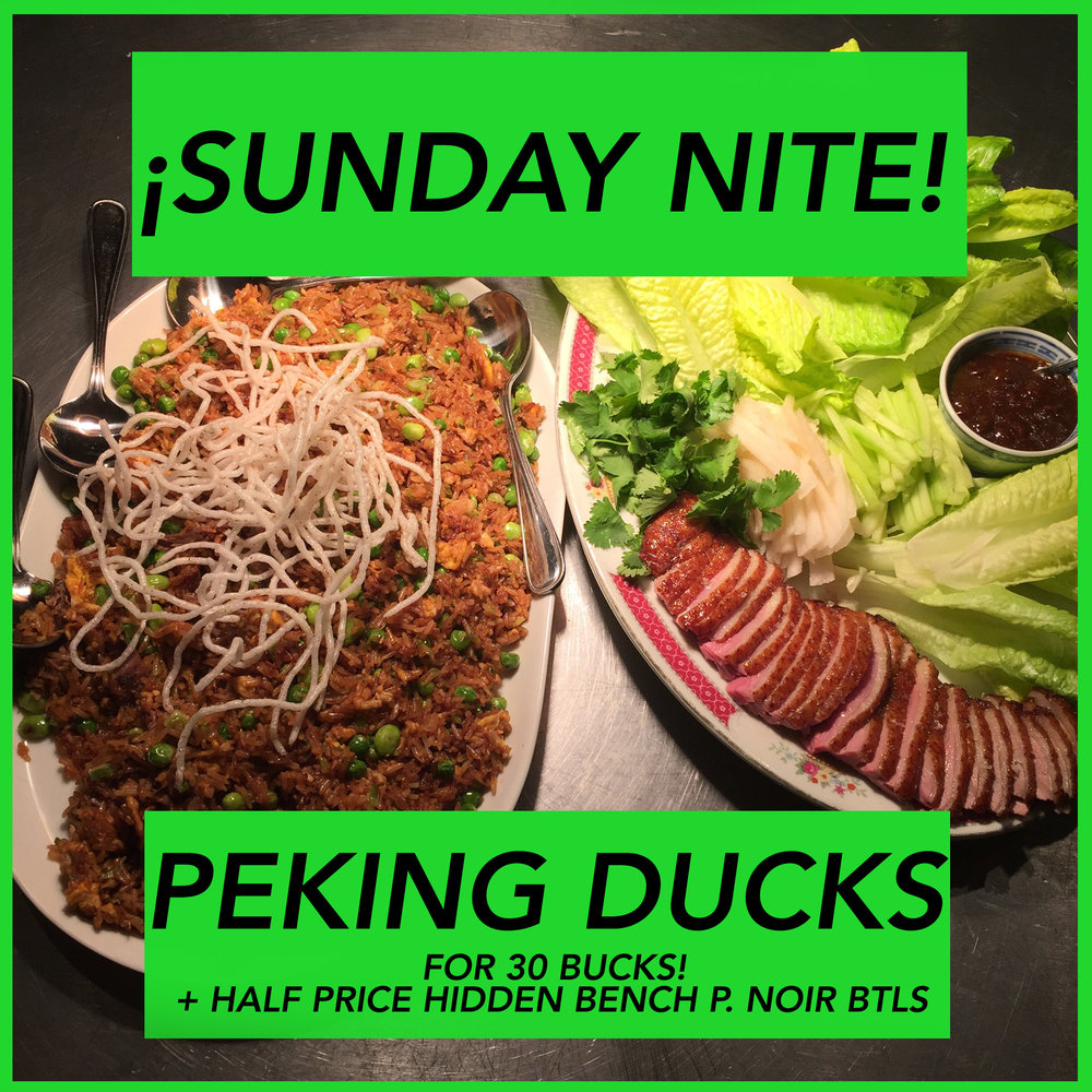 sunday duck IG promo1.jpg