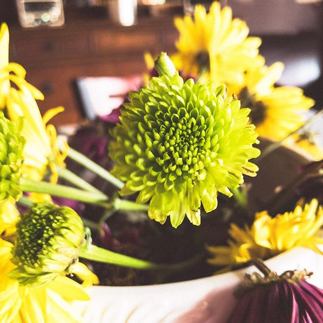 Spent a morning with the wife @italianhootie teaching her how to take better photos on her iPhone and how to edit with #lightroommobile Here's my shot from the session. #iphone #flowers #scurve #adobe #learning