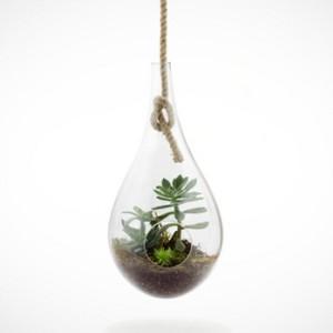 hanging-terrarium-1-8234[1]
