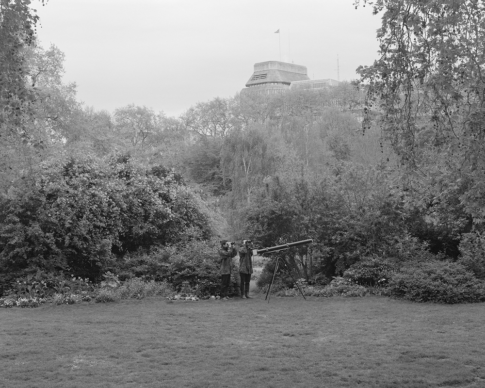 Bird Hunting with Tele-Pinhole Camera, Excursion #5