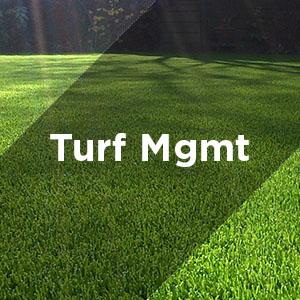 turf management