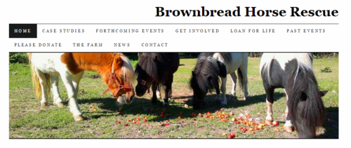 http://brownbread-horse-rescue.co.uk/