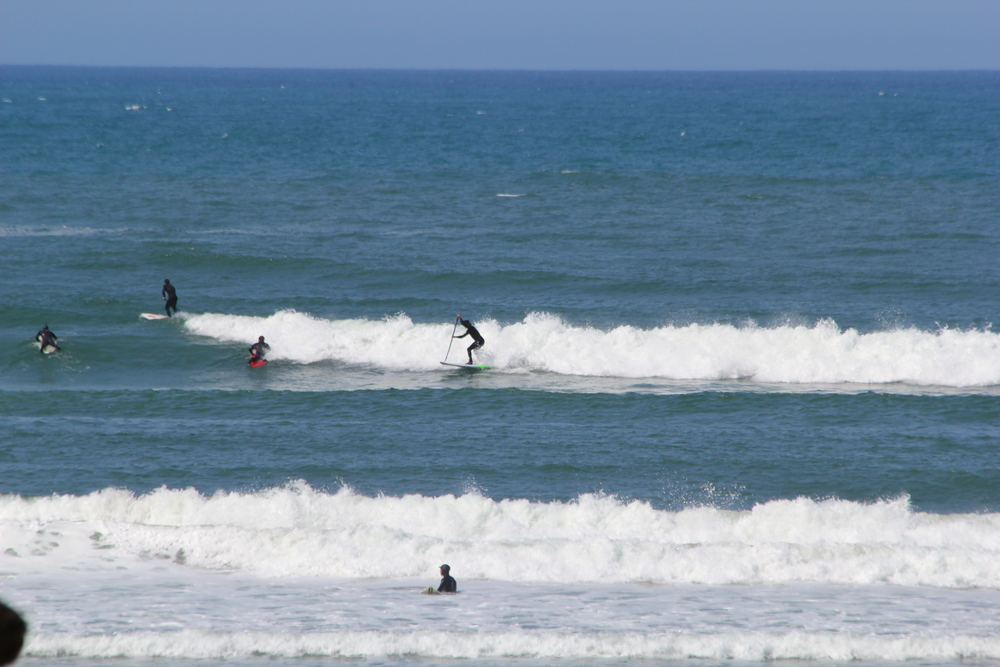 04-19 surf city (13)