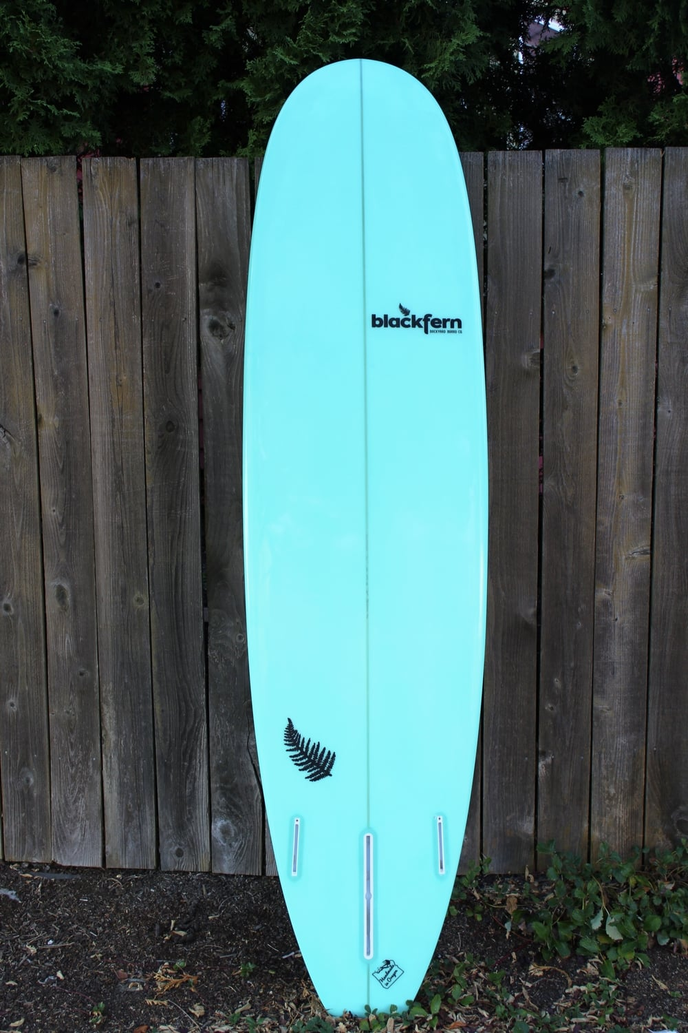 blackfern surfboards