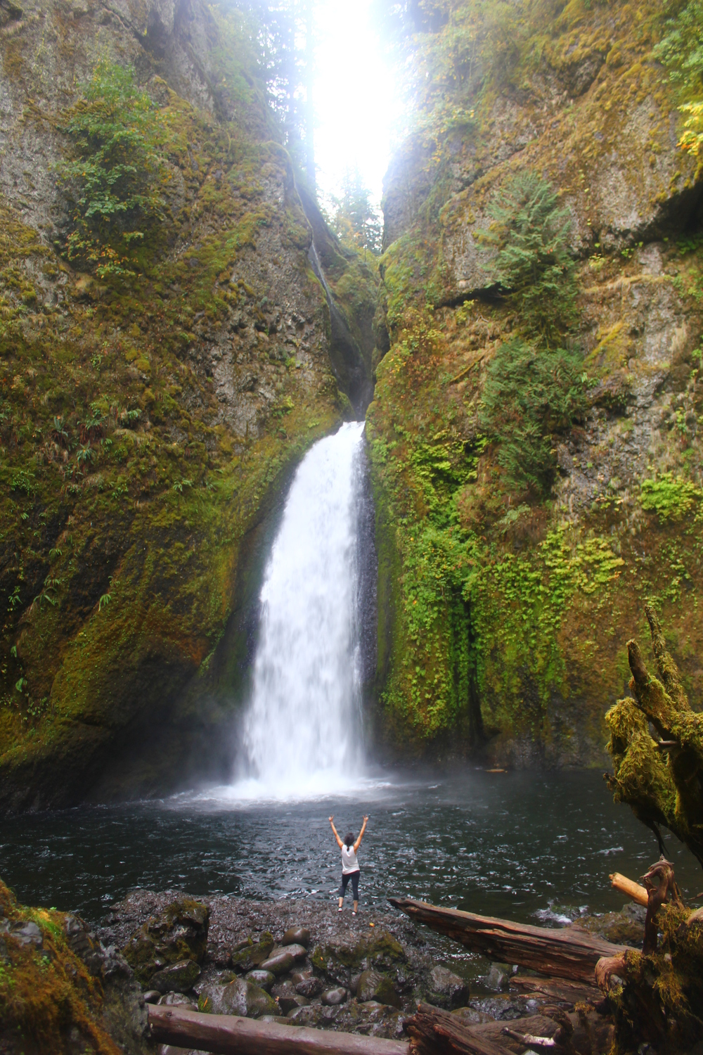 WAHCLELLA FALLS WATERFALL HIKE