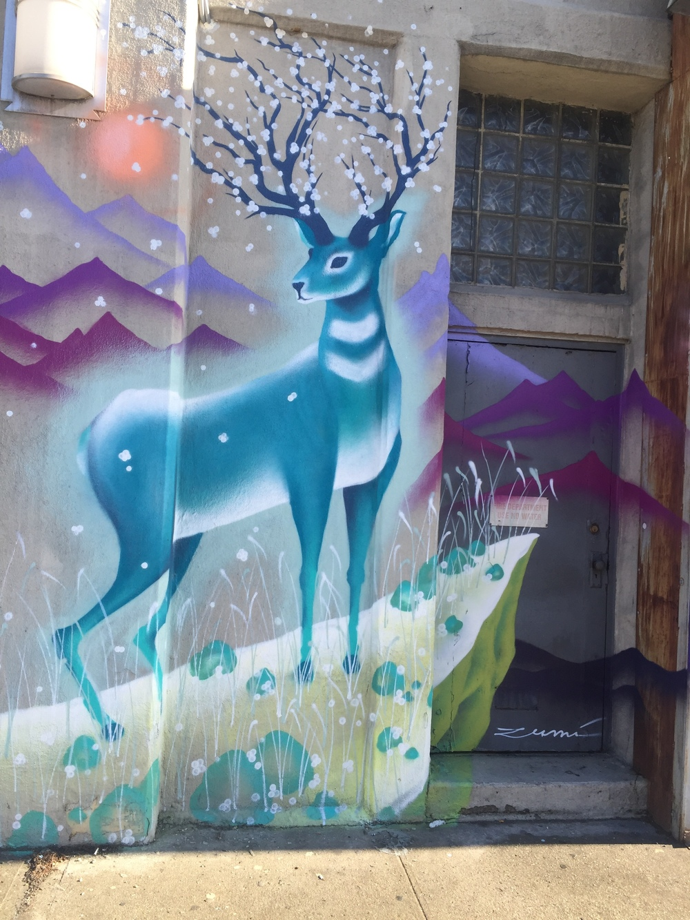 LIC street art by  Marina Zumi .