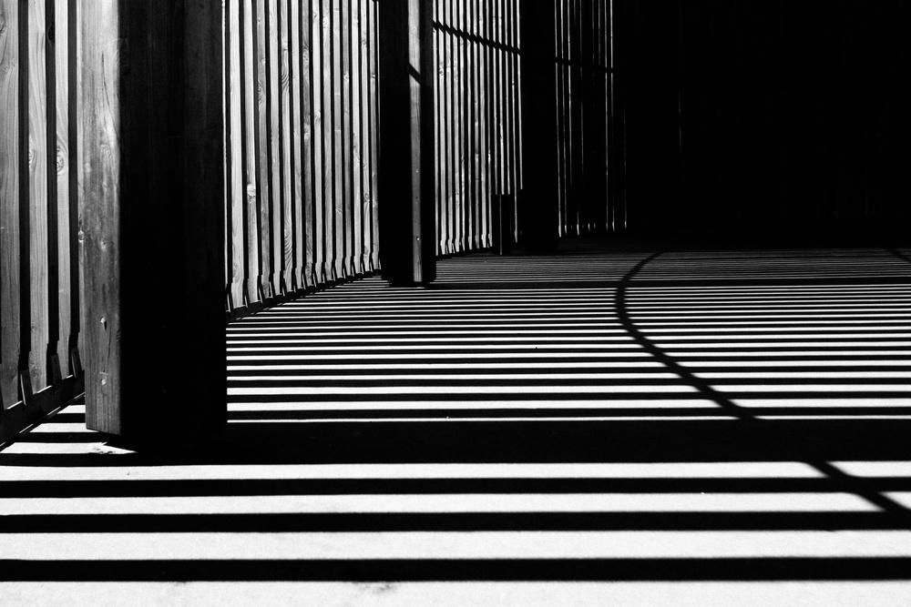 IMAGE CREDIT: Creative Commons - Samuel Zeller via Unsplash