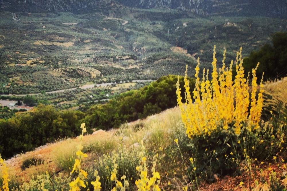 MtParnassus.jpeg