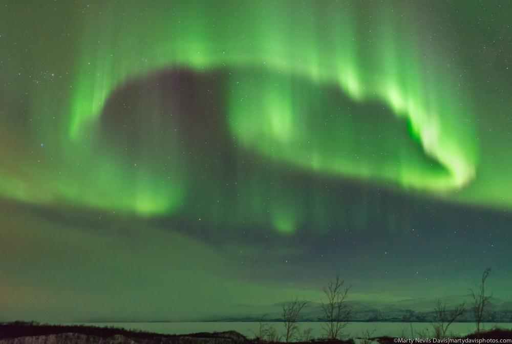aurora HR-2595.jpg
