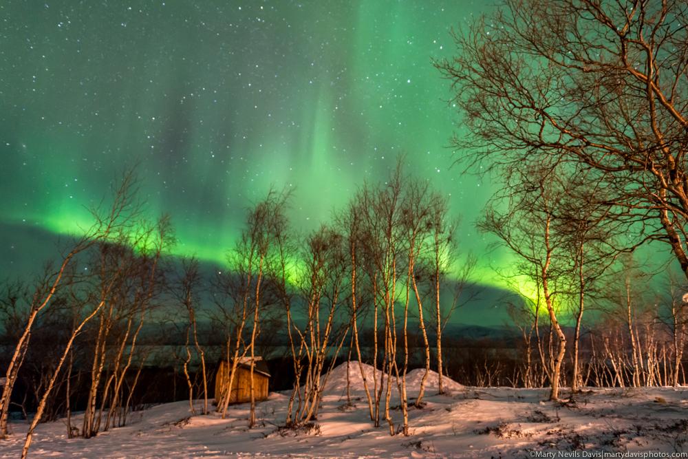 aurora_ HR-2586.jpg