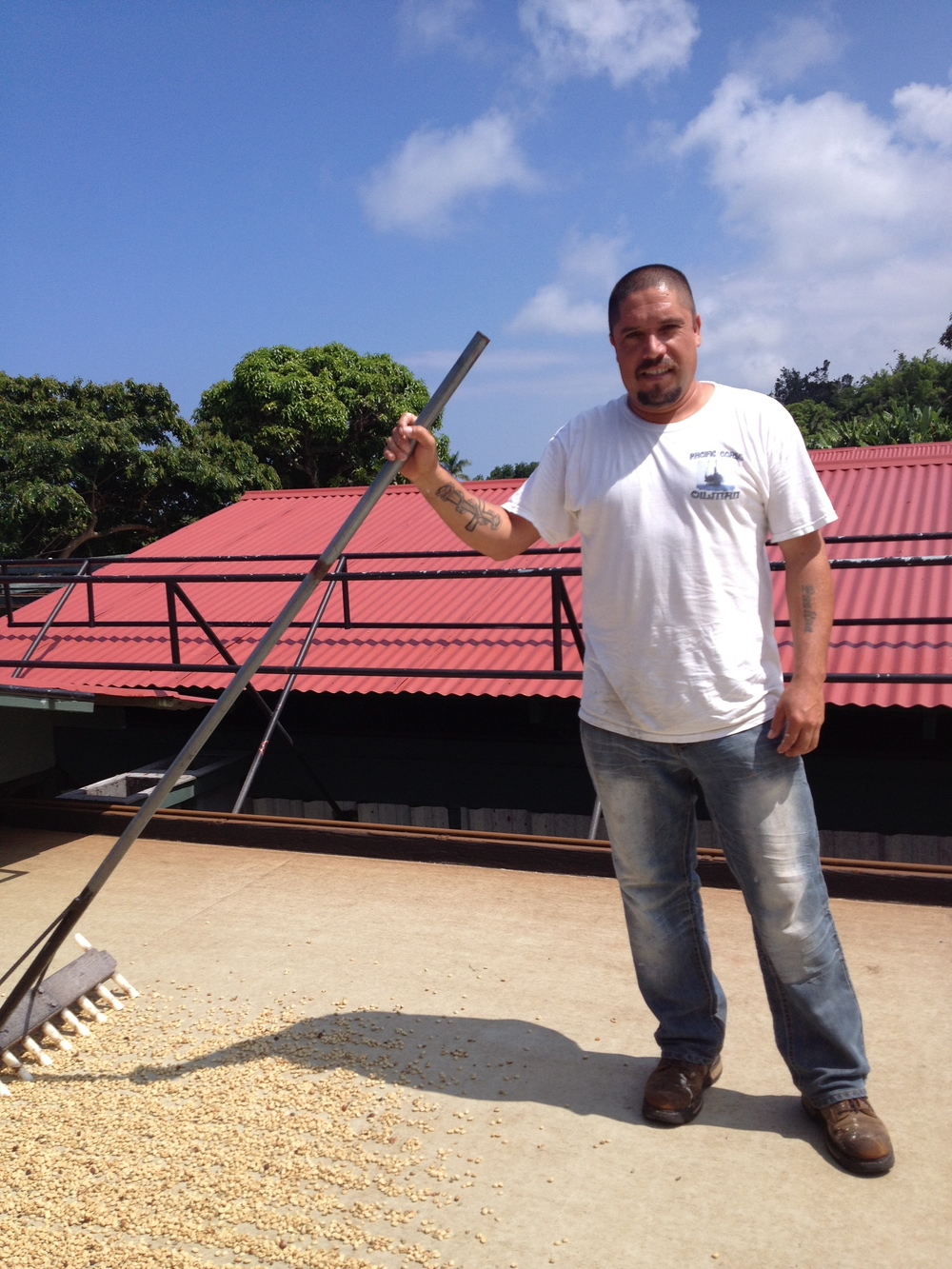 Angel Garza (Mexican). Coffee Worker. BIg Island.