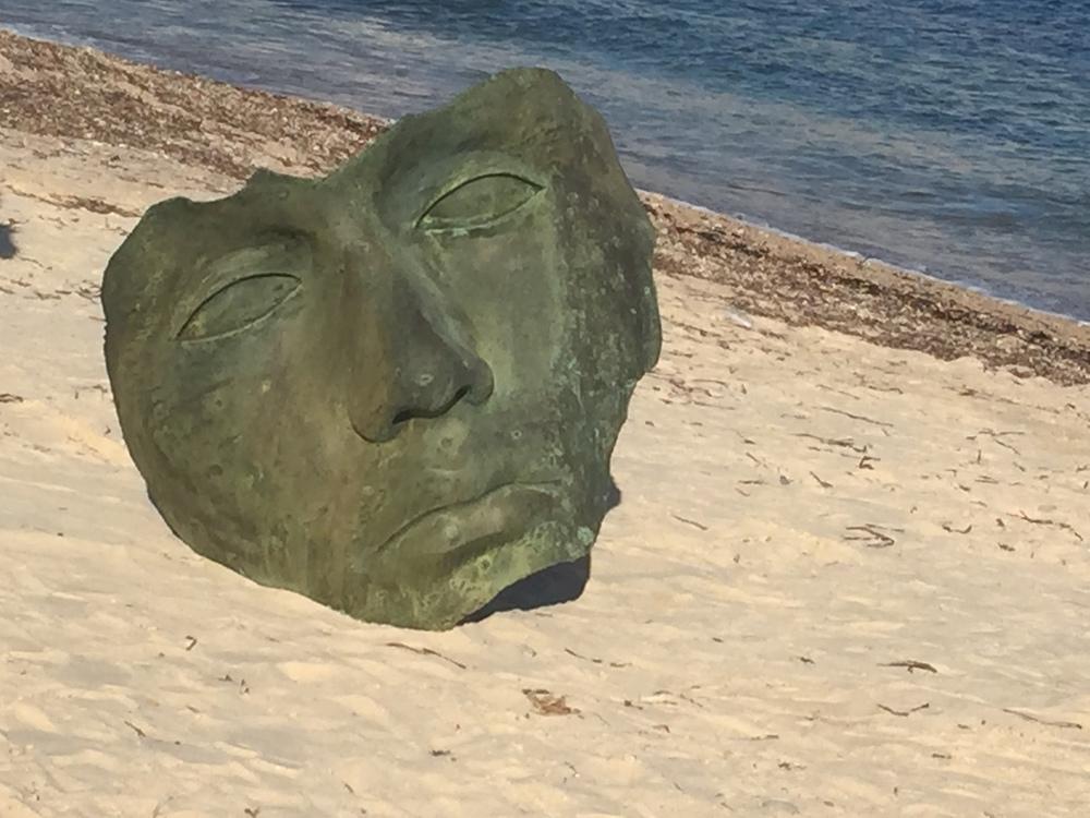 About9 tête dans le sable.JPG