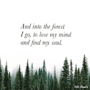 forest_mind_quote.jpg
