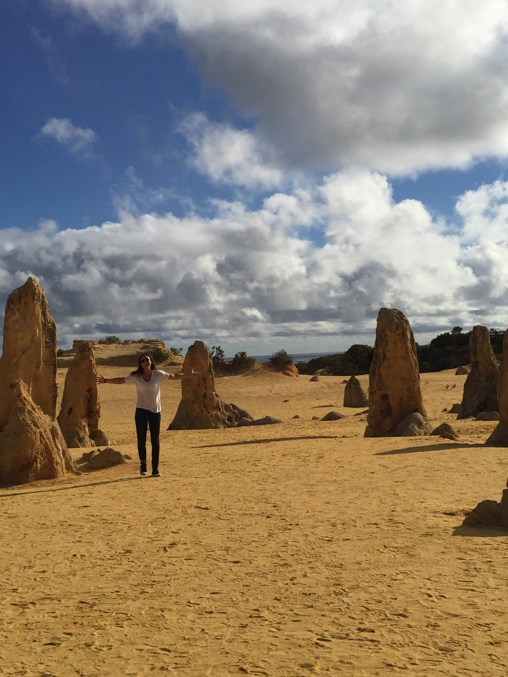Loving The Pinnacles in Western Australia! - Sheana M.