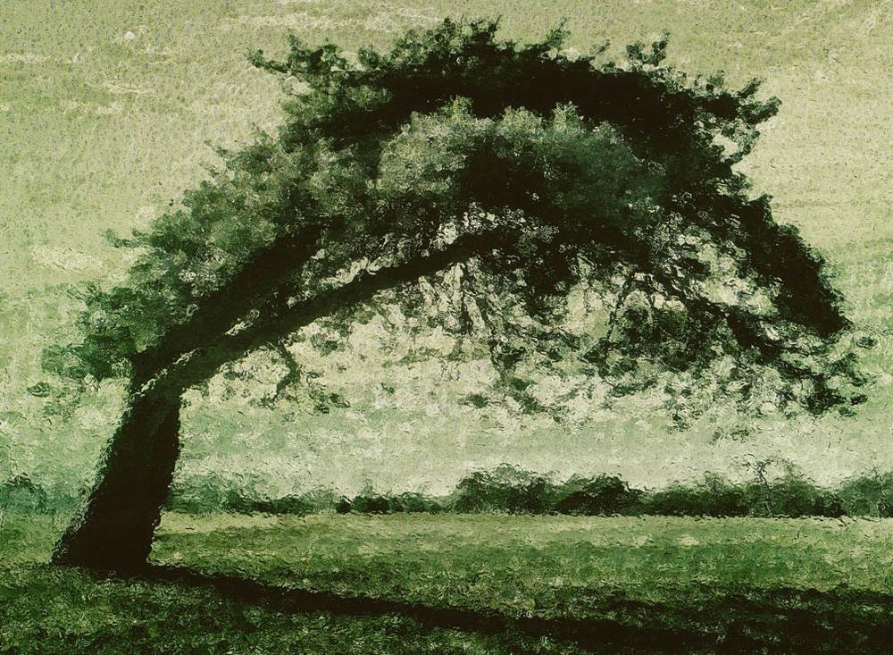 michaeleastman-forestparkforever-28.jpg