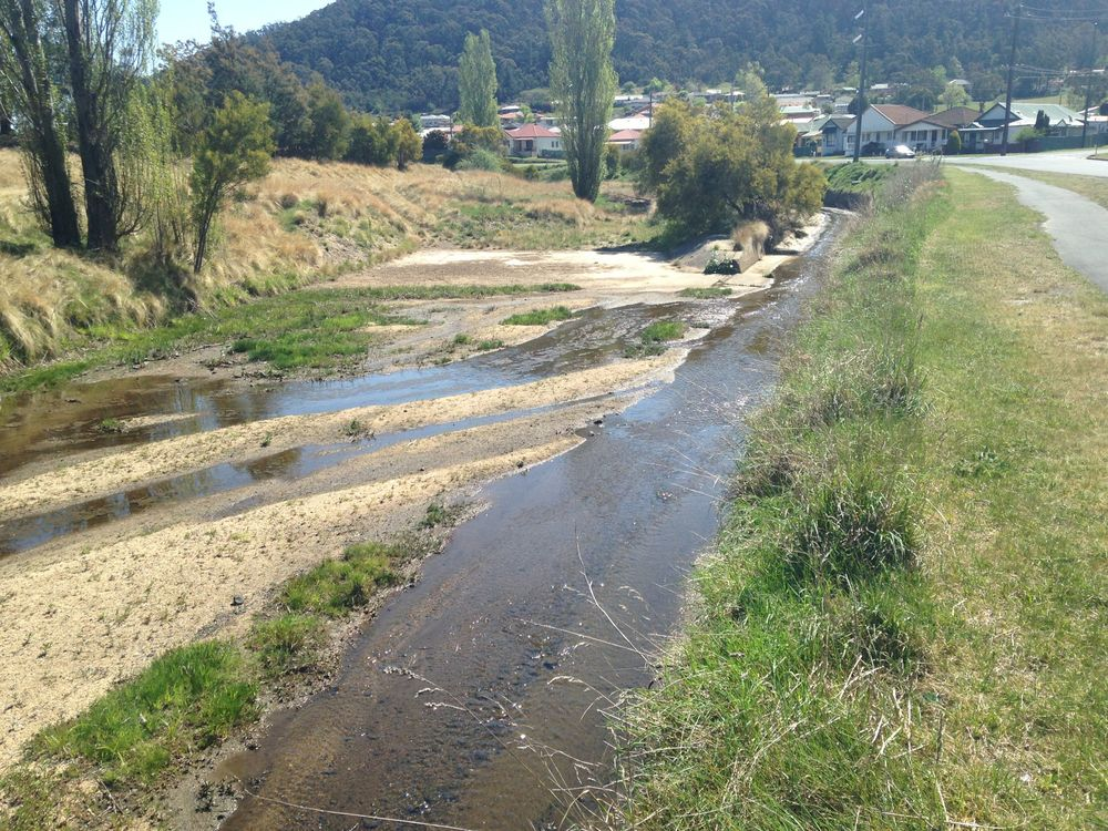 Sedimentation, concrete channelisation and exotic plants are some of the environmental issues in the Farmers Creek Catchment
