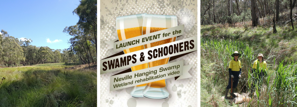 Our Events: Swamps & Schooners