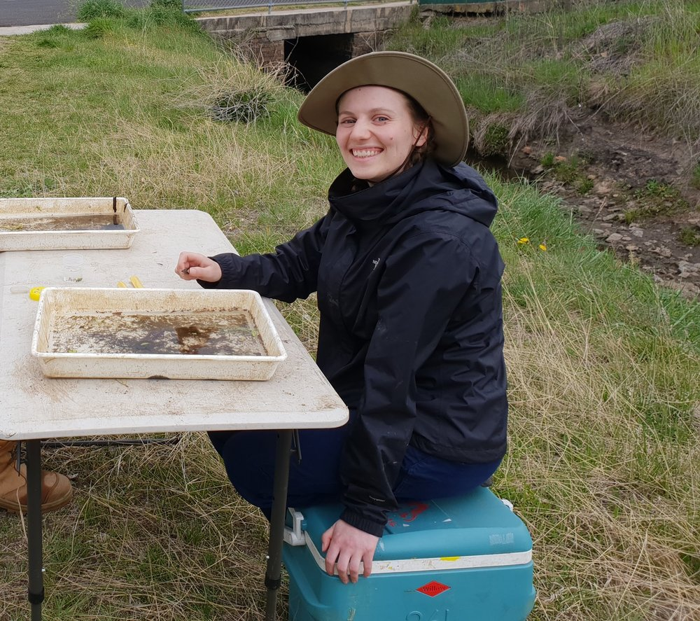 Macroinvertebrate assessment being conducted by CT Environmental staff