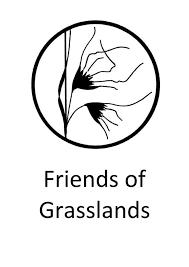 FOG logo.png
