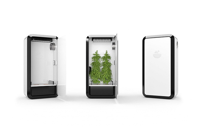 leaf-plug-n-plant-cannabis-home-growing-system-02.jpg