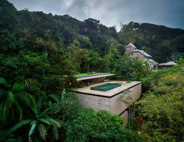 the-rainforest-house-2.jpg