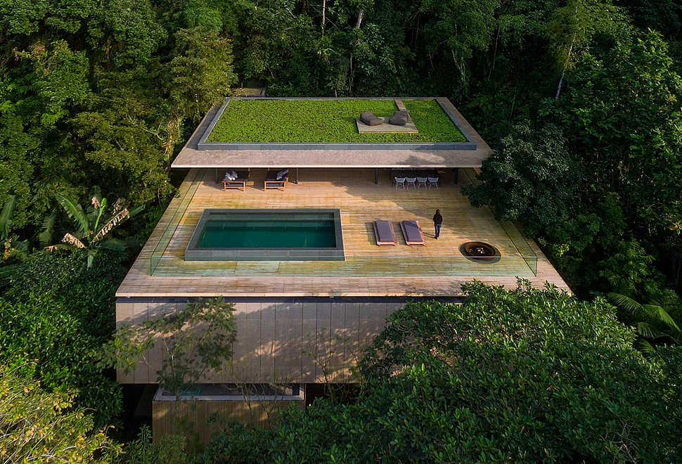 the-rainforest-house.jpg
