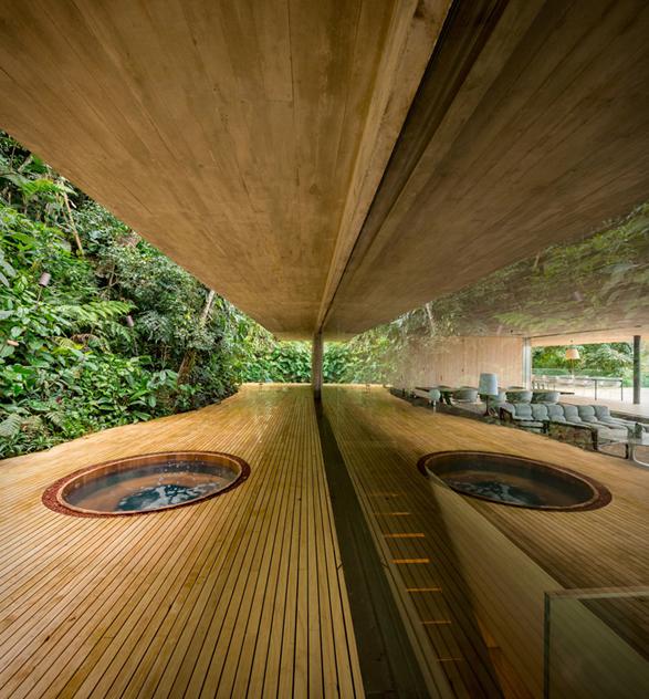 the-rainforest-house-17.jpg