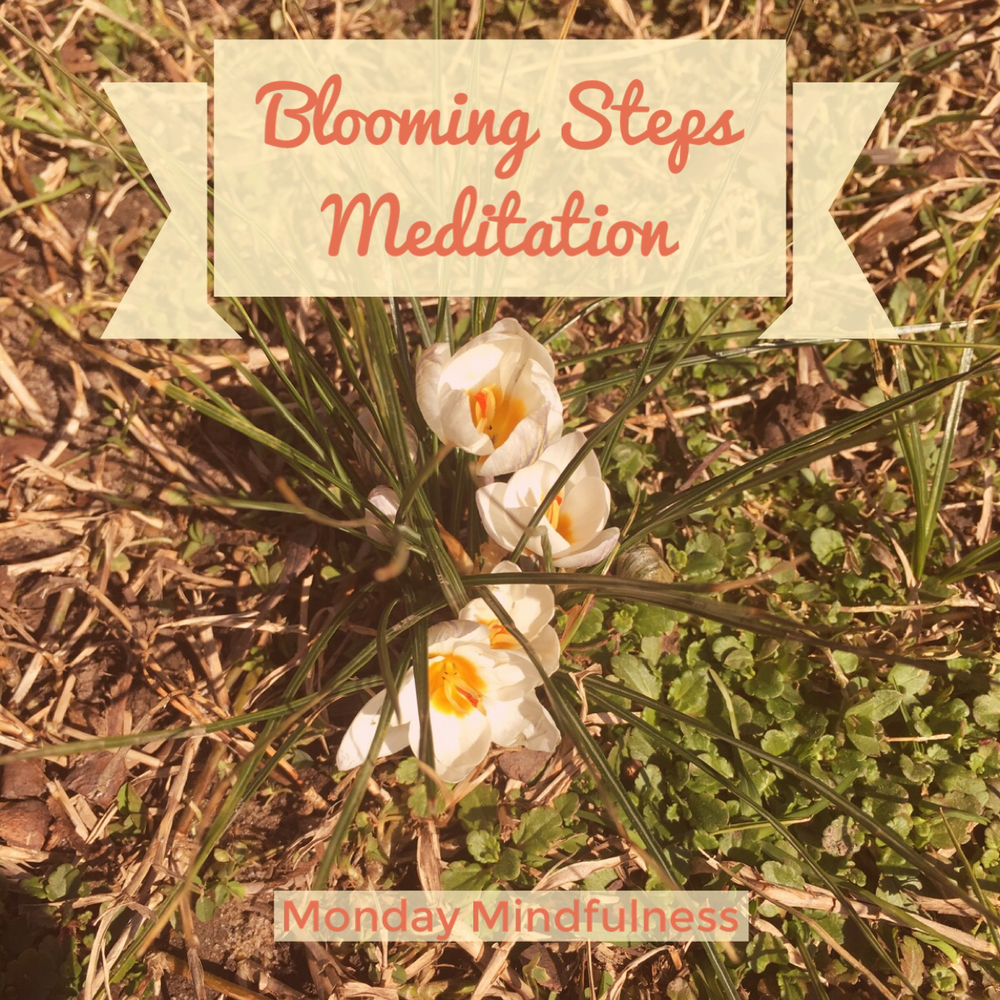 Mm-blooming steps.jpeg
