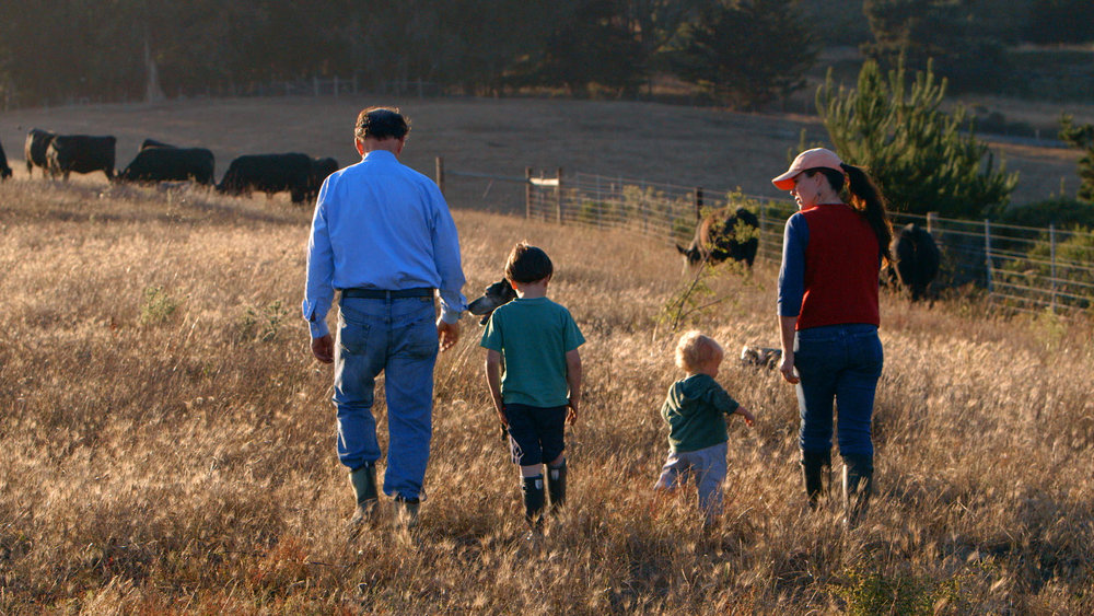 Sustainable - Ranchers Bill and Nicolette Niman enjoy a walk through the pasture at BN Ranch with their two young sons. Their cattle graze on public lands adjoining the Pacific Ocean in Bolinas, CA.