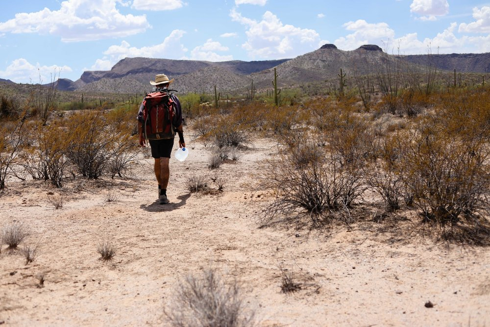 The Desert Walkers- Jeff, an experience No More Deaths Volunteer, leads a hike over a mile into the Sonora Desert.