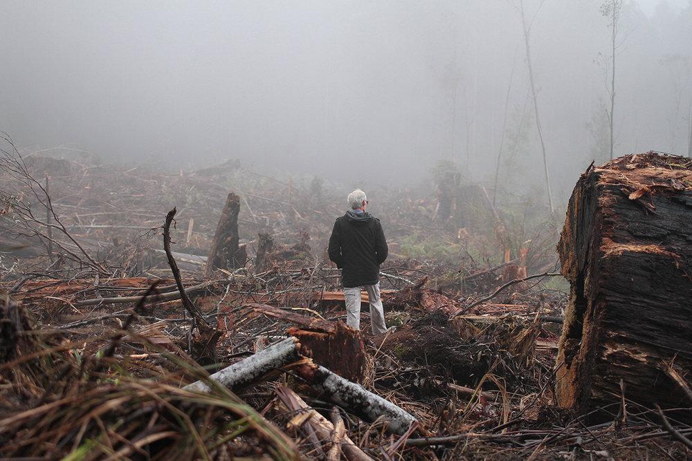 Bob Davey standing in a Tasmanian leatherwood coop(1).jpg