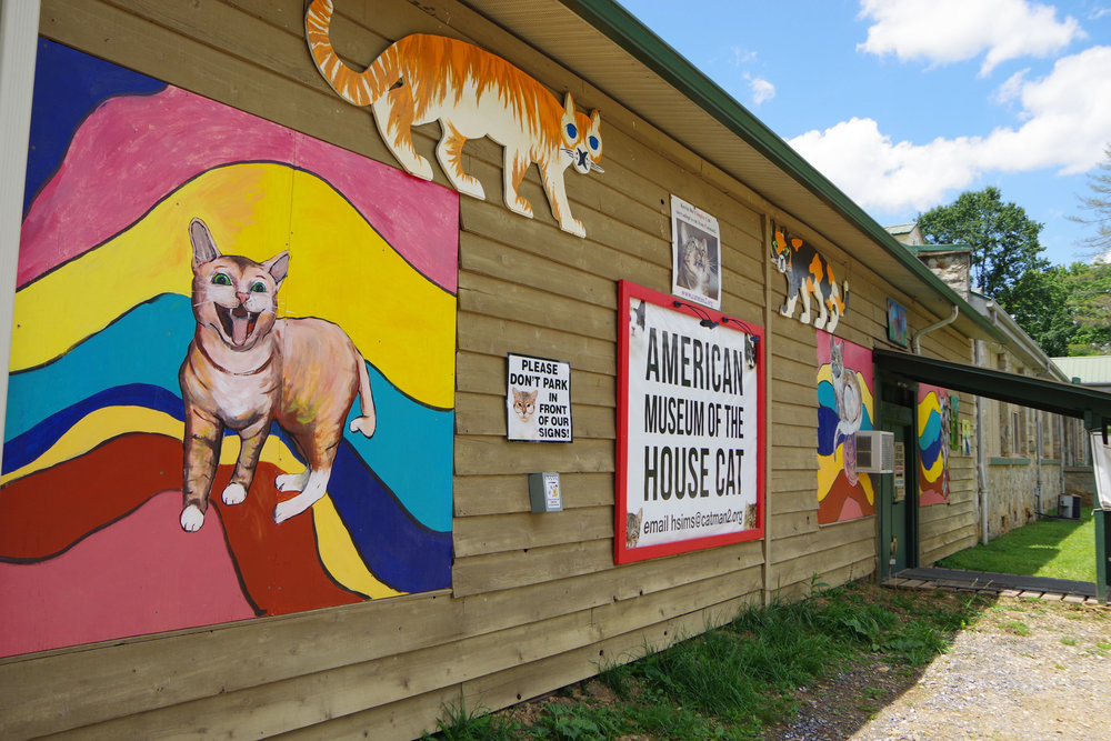 Little Works of Art - The American Museum of the House Cat in Sylva, NC, supports a no-kill, open cat shelter. Credit: RomanticAsheville.com.