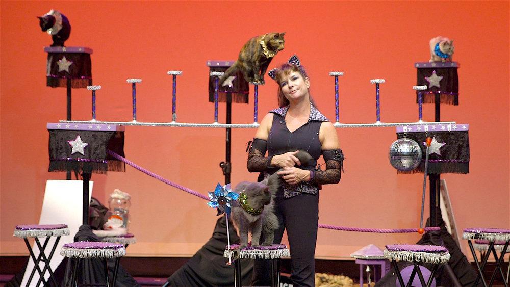 Samantha's Amazing Acrocats